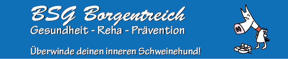 Homepage der BSG Borgentreich